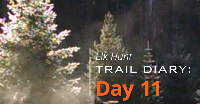 Elk Hunt Trail Diary: Day 11